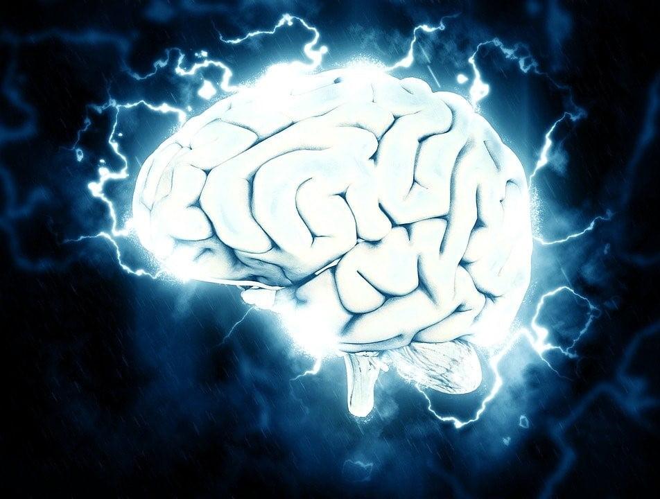 Beynimiz Yaşlansa da Yeni Sinir Hücreleri Üretebilir Mi?