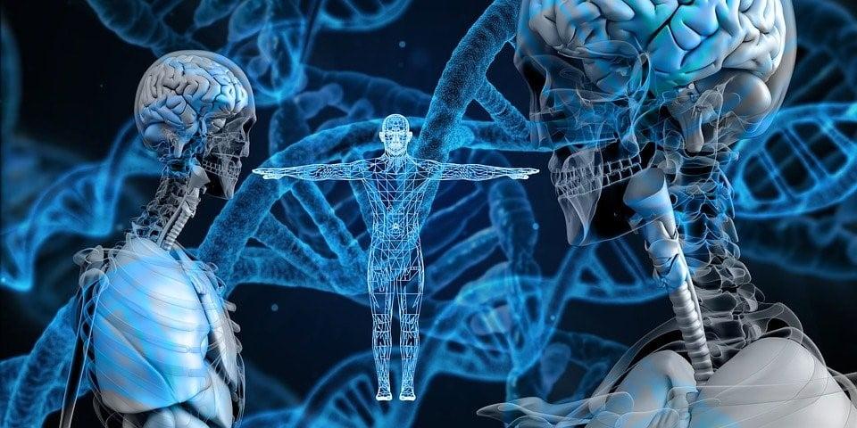 Bio Entrepreneurship?